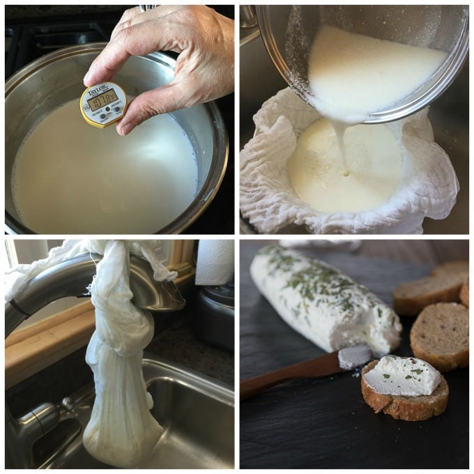 Easy home make goat cheese recipe | ethnicspoon.com