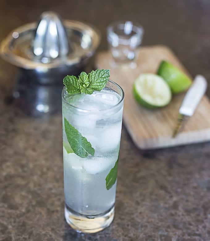 Coconut water mojito with mint, agave nectar and rum. |ethnicspoon.com
